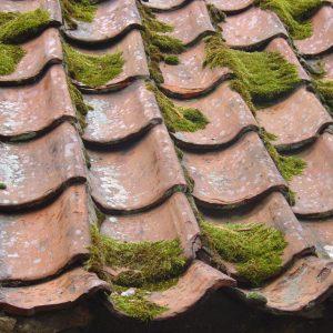démoussage toiture quimper